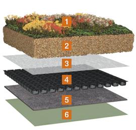 die druckbelastbare drainage extensive dachbegr nung von. Black Bedroom Furniture Sets. Home Design Ideas